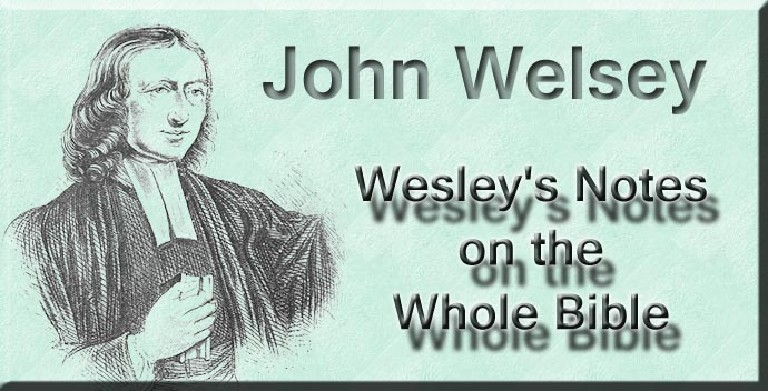 Notes on the Entire Bible-The Book of 2nd Kings (John Wesleys Notes on the Entire Bible 12)